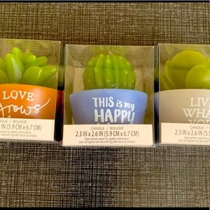 Small Succulent Candles Set of 3